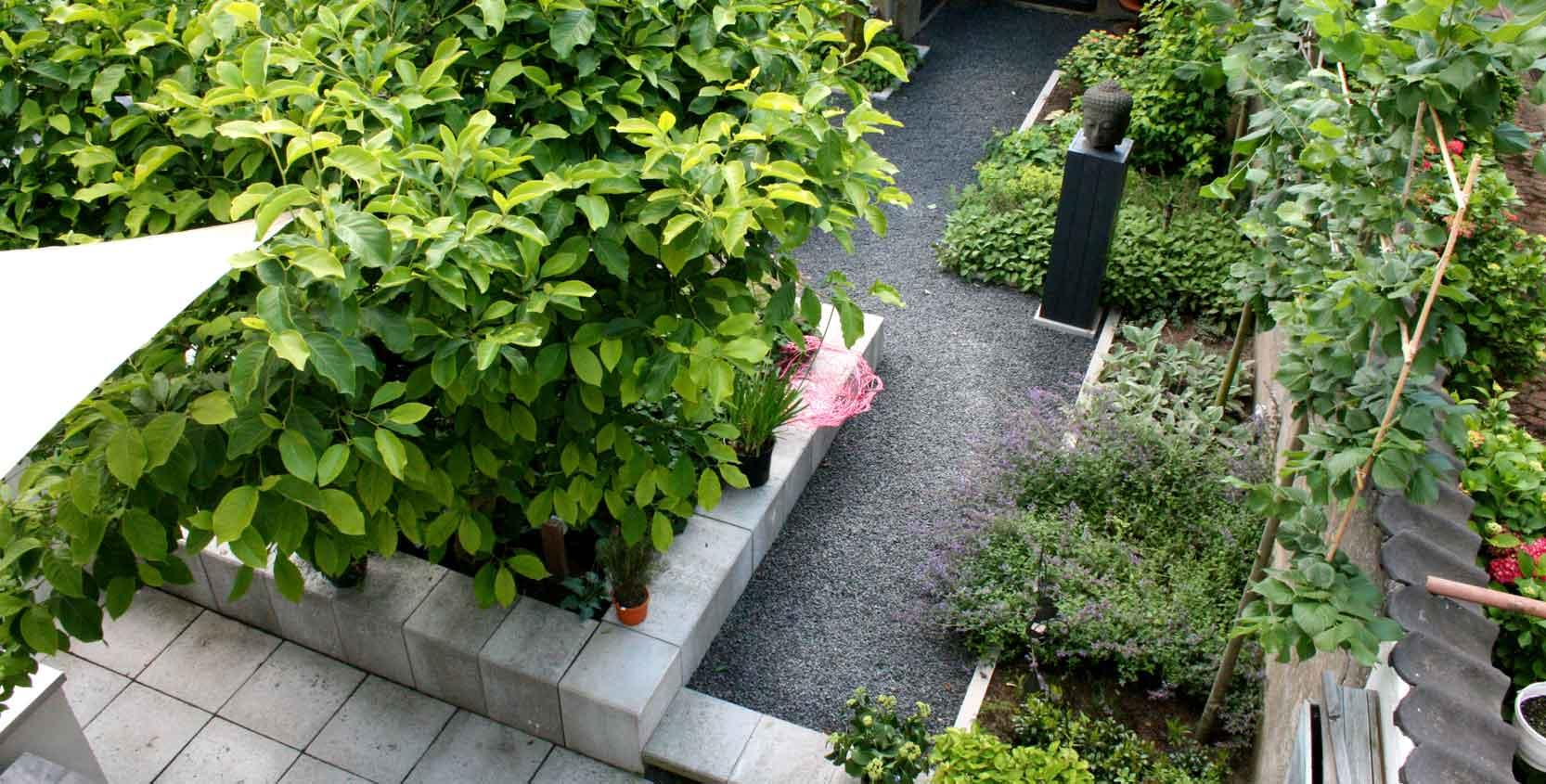 vogelperspectief van kleine tuin frank fritschy gardendesign