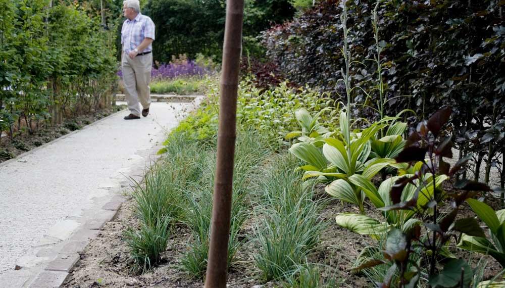 vaste planten border met veratrum en carex