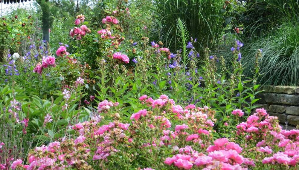 retro tuinen project rozet 7